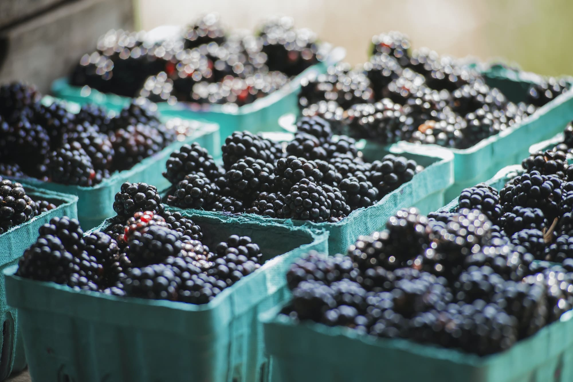 Organic blackberries in punnets at a market stall.