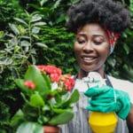 Fabriquez vos insecticides bio