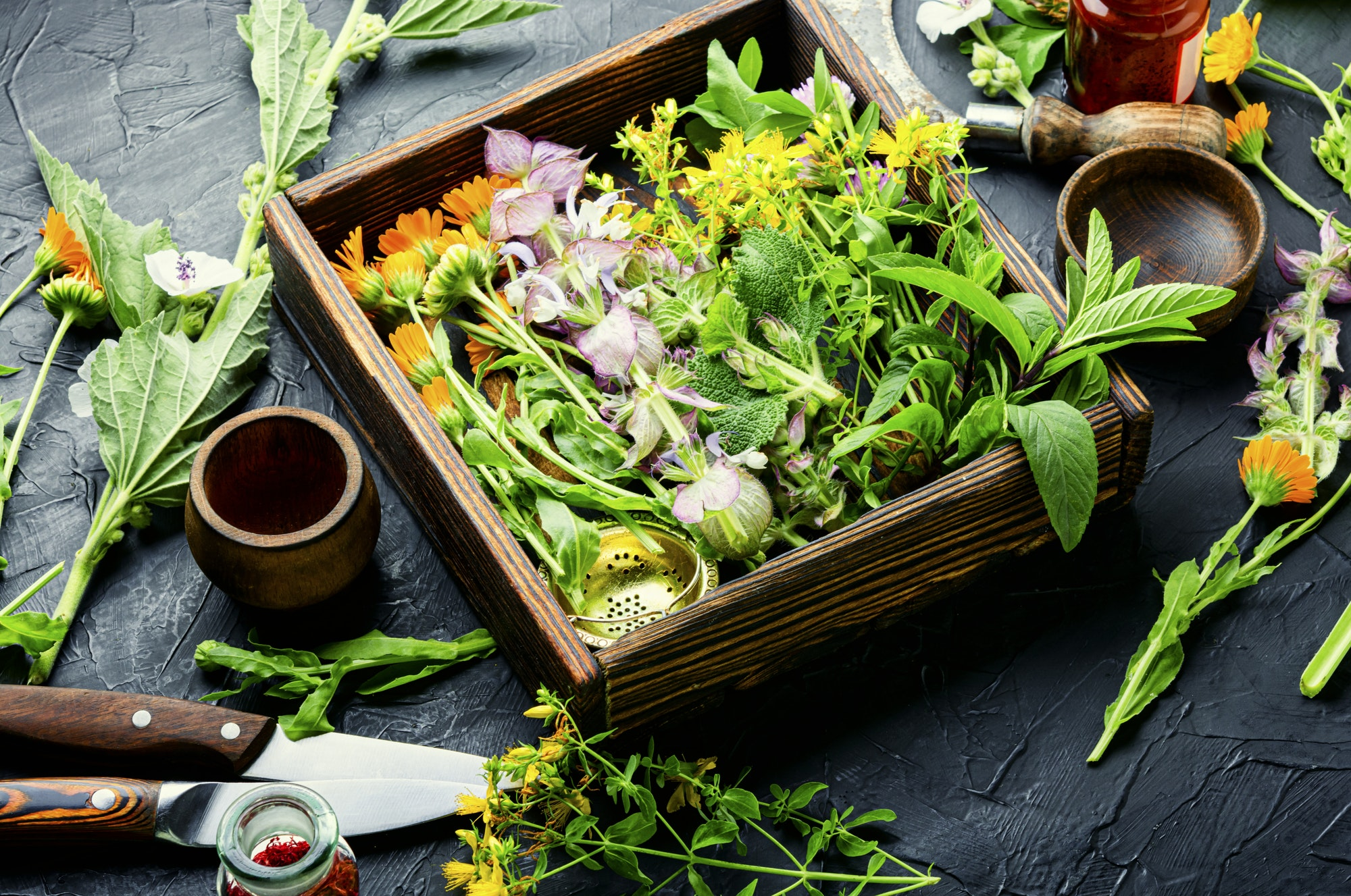 Medicinal herb and flower