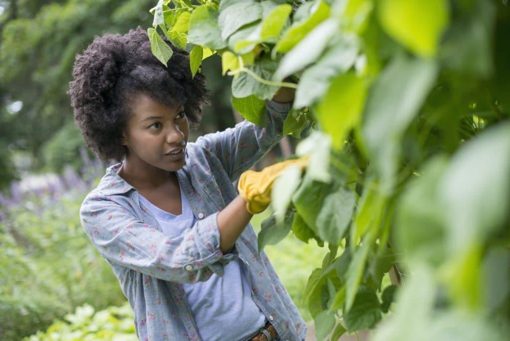 jardiner antistress anform magazine