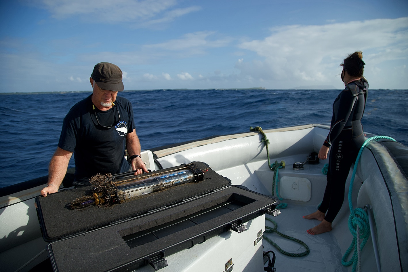 carimam mammiferes marins sur ecoute-ocean-balein