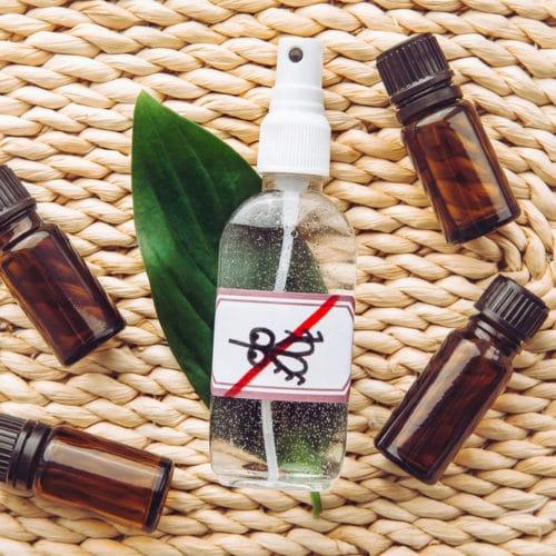 Mes huiles essentielles anti-moustiques