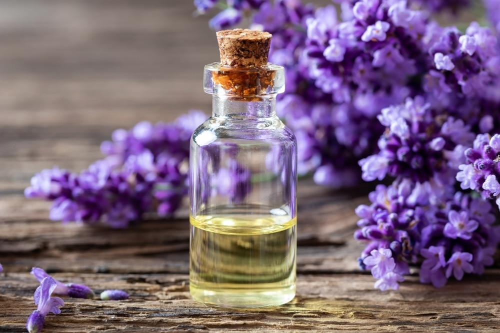 HE huile essentielle lavande anti-stress